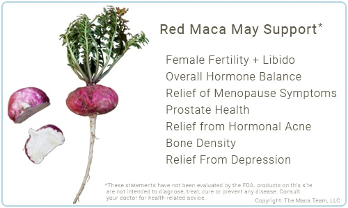 Red Maca Benefits