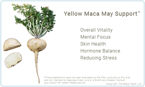Yellow Maca Benefits