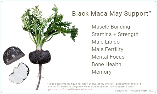Black Maca Benefits